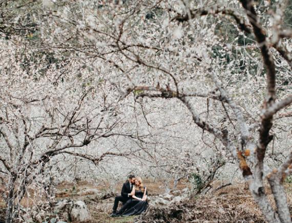 Cặp ngoại quốc chụp ảnh cưới giữa rừng mơ Mộc Châu
